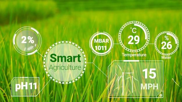Tecnologia di agricoltura digitale intelligente grazie alla raccolta di dati del sensore futuristico