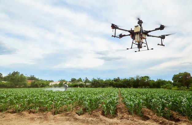 Agricoltura intelligente i droni agricoli volano per spruzzare sui campi di mais, gli agricoltori spruzzano insetticidi con droni agricoli