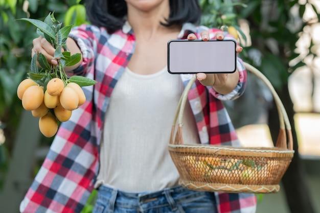 Agricoltura intelligente utilizzando le moderne tecnologie in agricoltura. donna contadina con computer tablet digitale, telefono in fattoria prugna mariana utilizzando app e internet, prugna mariana, mango mariano. (mayongchid in thailandese)