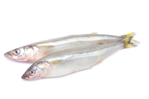 Odore di pesce