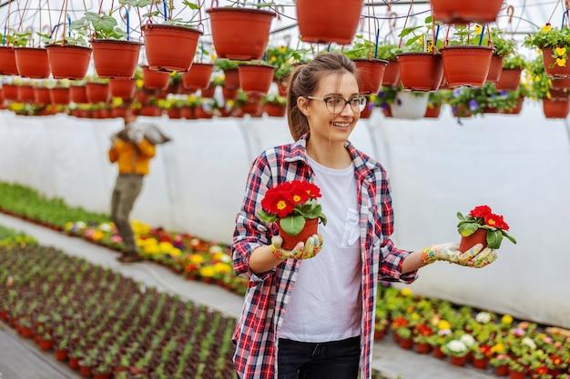 Imprenditore femminile sorridente in piedi in serra e in possesso di vasi con fiori rossi.