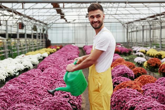 Sorridendo e tenendo l'acqua può. foto del bel ragazzo giovane nella serra che si prende cura dei fiori colorati di rosa.