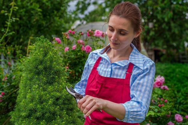 Signora sorridente giovane donna che pota un cespuglio in una giornata di sole. giardinaggio primaverile ed estivo.