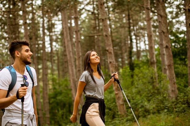 Giovani coppie sorridenti che camminano con gli zaini nella foresta in una giornata estiva