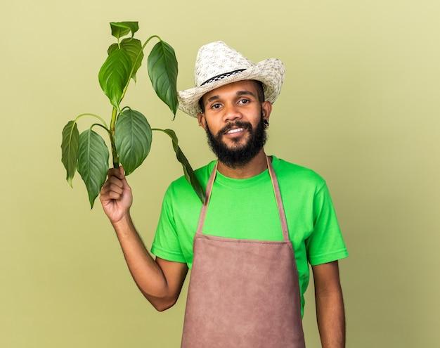 Sorridente giovane giardiniere afro-americano che indossa cappello da giardinaggio che tiene pianta isolata sul muro verde oliva