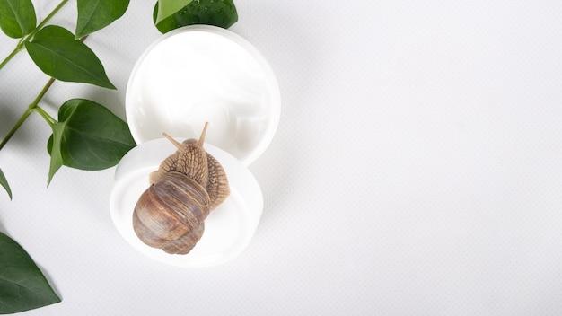Cosmetici di mucina di lumaca con copia spazio su sfondo bianco.