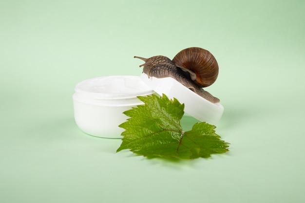 Crema di mucina di lumaca, cura della pelle di bellezza.