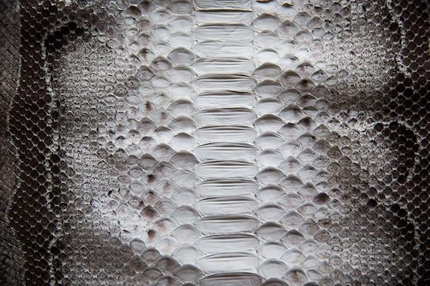 Fine di struttura della superficie della pelle di serpente su per fondo e la carta da parati