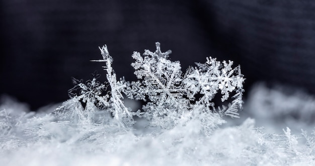 Istantanea di un piccolo fiocco di neve scattata durante una nevicata