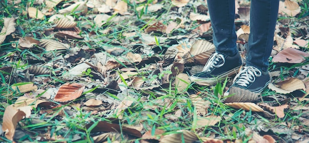 Sneaker scarpe giovane donna sulla sosta di autunno. concentrarsi su scarpe da ginnastica e jeans sul sentiero nel parco forestale.