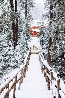 Ponte innevato nella costruzione della foresta sullo sfondo