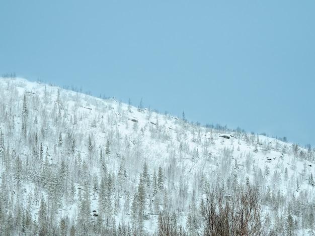 Passo della neve. una collina bianca ricoperta di neve contro un cielo blu. paesaggio minimalista.