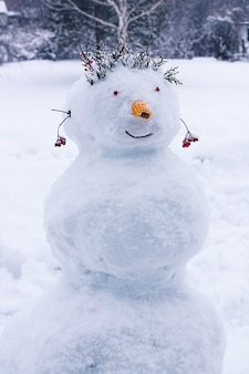 Scultura di neve, pupazzo di neve, divertimento invernale