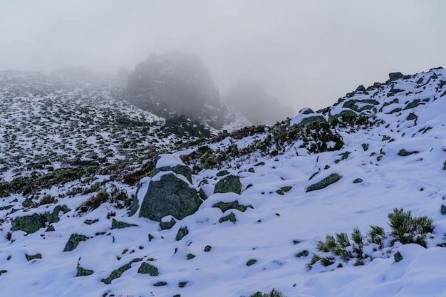 Paesaggio innevato della montagna di madrid, neve bianca che copre il terreno e nebbia intensa che scende dalla montagna. la morcuera madrid. spagna.
