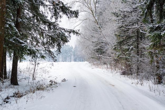 Strada innevata nella foresta invernale in una giornata invernale nuvolosa