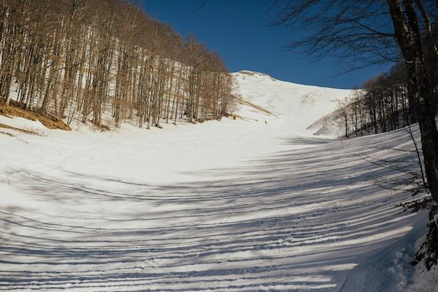 Pista innevato con piste da sci in montagna invernale.