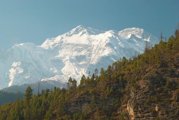 Montagne tibetane innevate, vista dal trekking dell'annapurna