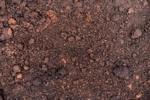 Terra morbida con argilla per lo sfondo