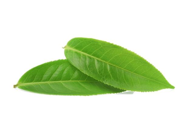 Foglie di tè morbide isolate su priorità bassa bianca.