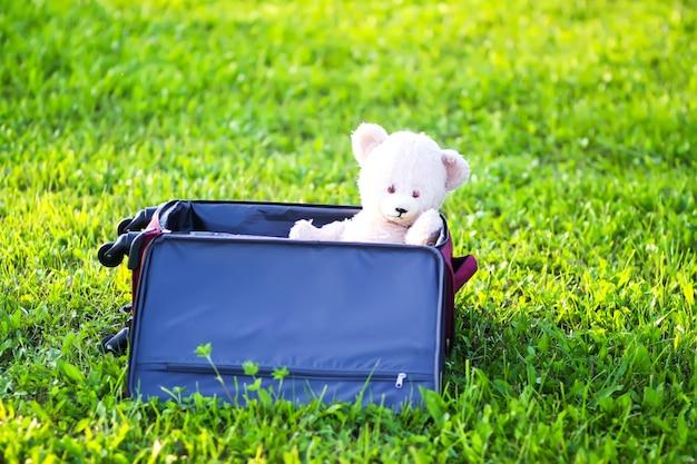 Orso di peluche in borsa da viaggio sul prato verde estivo.
