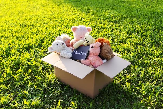 Giocattoli morbidi per donazione nella scatola di cartone aperta su erba verde all'aperto alla luce del sole