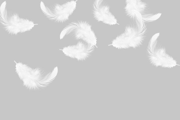 Morbide piume bianche che cadono nell'aria