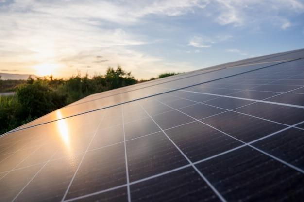 Energia solare nella fattoria dello zucchero, energia verde, energia naturale per l'agricoltore