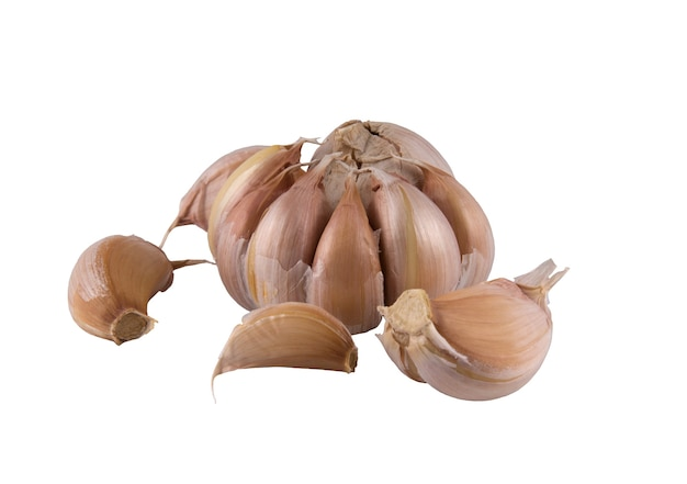 Alcuni spicchi d'aglio e tutta la testa su fondo chiaro