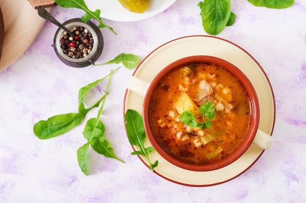 Zuppa con cetrioli sottaceto e orzo perlato - rassolnik su un tavolo luminoso. vista dall'alto. disteso