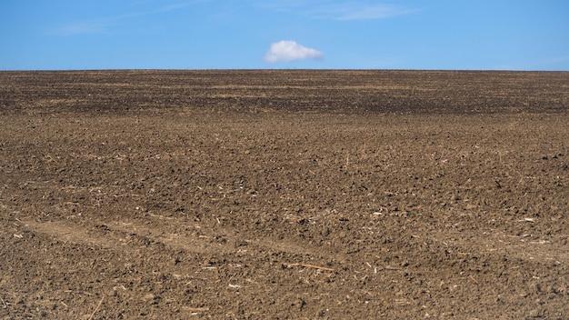 Il campo seminato della terra all'orizzonte.