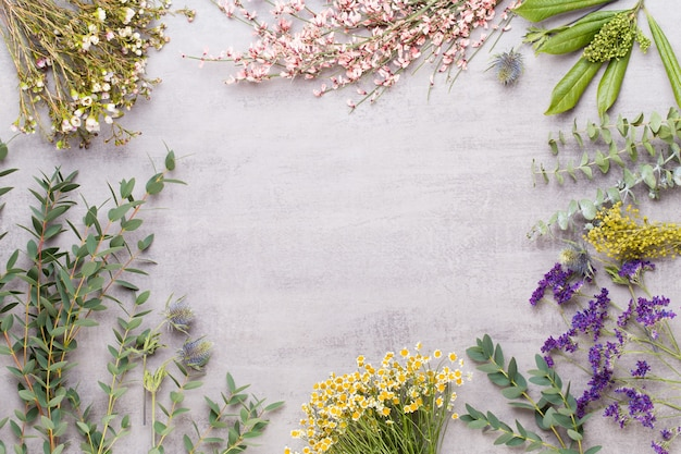 Spa aromaterapia prodotti cosmetici concetto