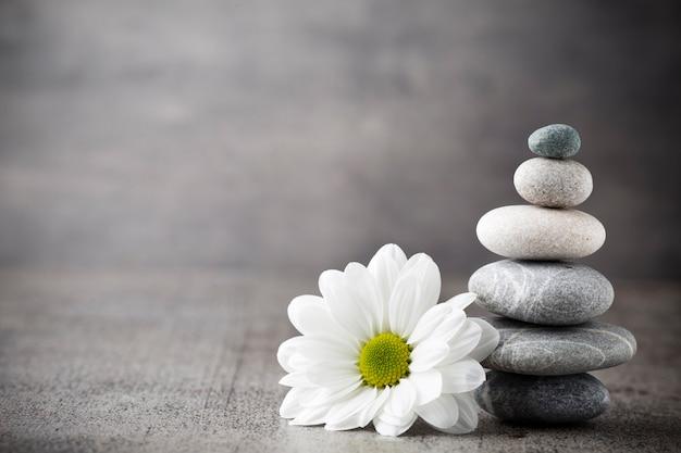 Scena di trattamento delle pietre della stazione termale, zen come concetti.