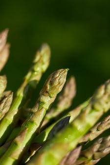 Lance di asparagi verdi freschi al sole, copia spazio per il testo
