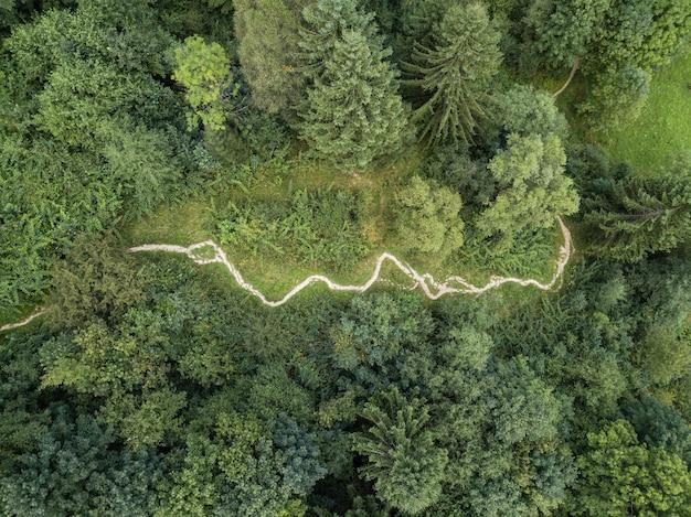 Spettacolare vista aerea su strada sterrata con montagne e foreste catturate dall'alto, montagne dei carpazi