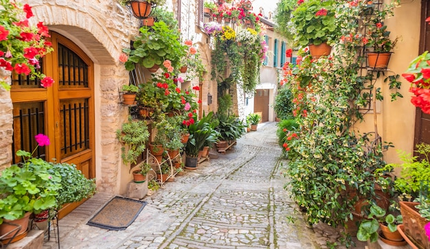 Spello, italia - circa giugno 2021: fiori in antica strada. spello si trova nella regione umbria, italia.