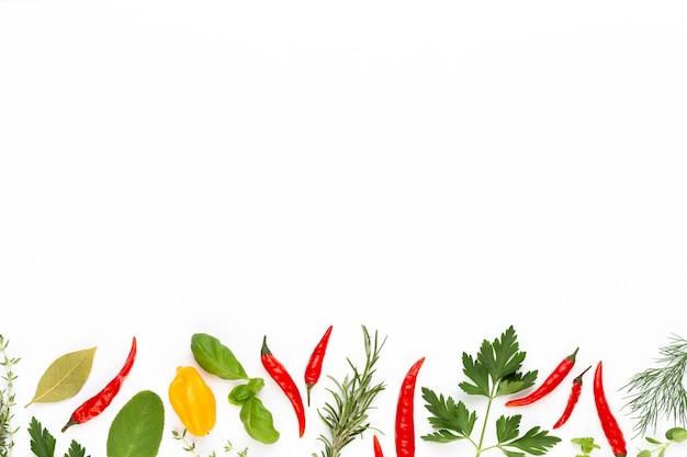 Spice foglie di erbe e peperoncino su superficie bianca. modello di verdure. floreale e verdure su superficie bianca. vista dall'alto, piatto.