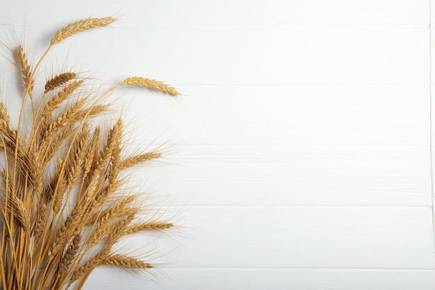 Spighette di grano e cereali su sfondo chiaro