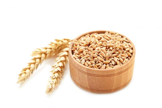 Spighette di grano con grano in ciotola isolata su fondo bianco