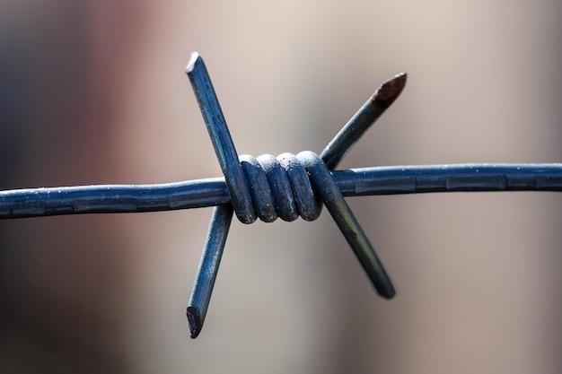 Primo piano della colonna vertebrale. filo di metallo spinato