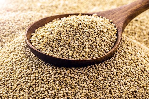 Cucchiaio con i chicchi di quinoa in cima al mucchio dei semi. super fonte alimentare di calcio, ferro e acidi grassi