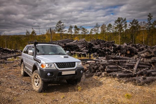 Sport utility vehicle nella foresta autunnale vicino a vecchi tronchi