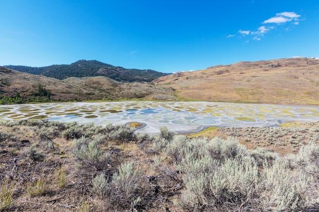 Spotted lake nella british columbia, canada