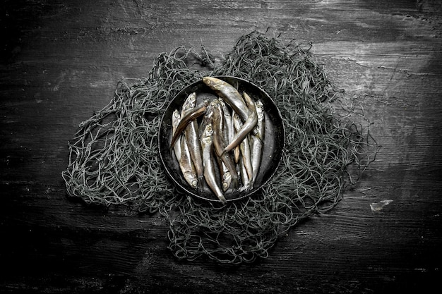 Spratti in una ciotola sulla rete da pesca. su uno sfondo di legno nero.