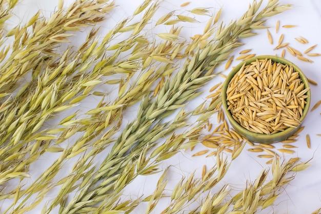 Rametti e semi di avena