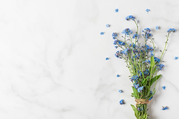 Primavera blu non ti scordar di me bouquet di fiori su bianco