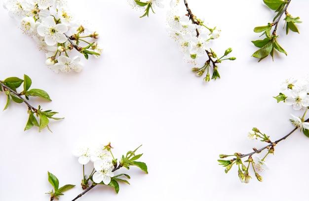 Superficie del bordo primaverile con bellissimi rami fioriti bianchi