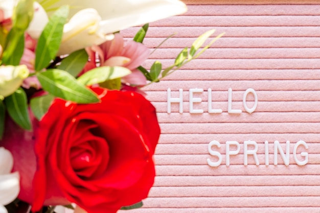 Concetto di primavera. rosa rossa sulla lavagna con citazione ciao primavera su sfondo rosa. vista dall'alto con copia spazio per il testo. lay piatto.