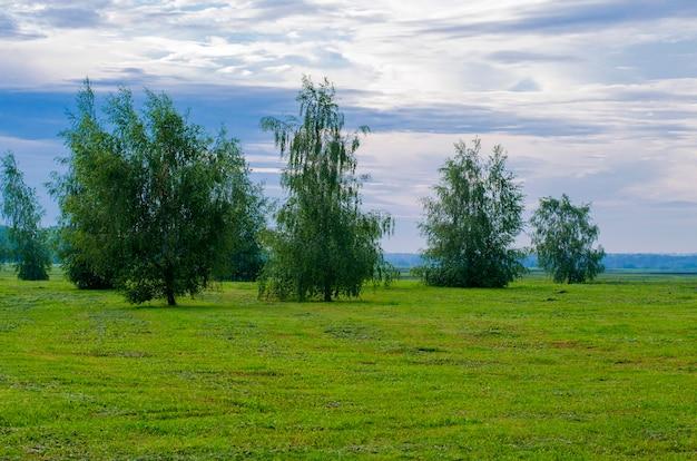 Paesaggio di campagna primaverile in tempo nuvoloso e piovoso