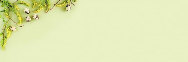 Bordo floreale di pasqua di primavera. rami di albero naturali, fiori gialli e uova di quaglia su backgroud verde