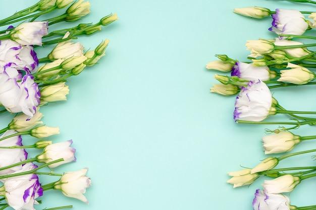 Priorità bassa della bandiera di fiori di primavera. cornice su sfondo blu di rose cespuglio. vista dall'alto.